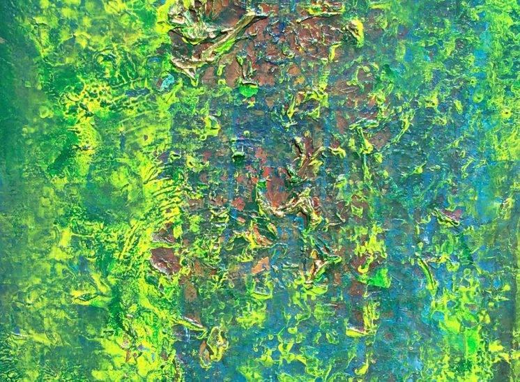 Chutes d'Iguazu 1